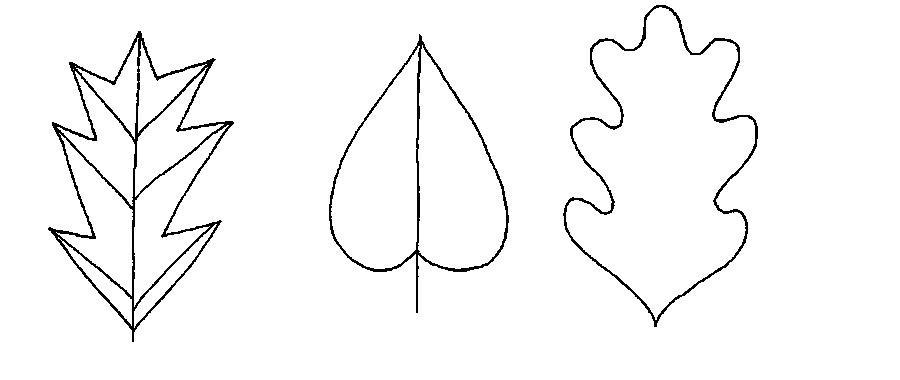 Раскраски вырезания контуры листьев для вырезания