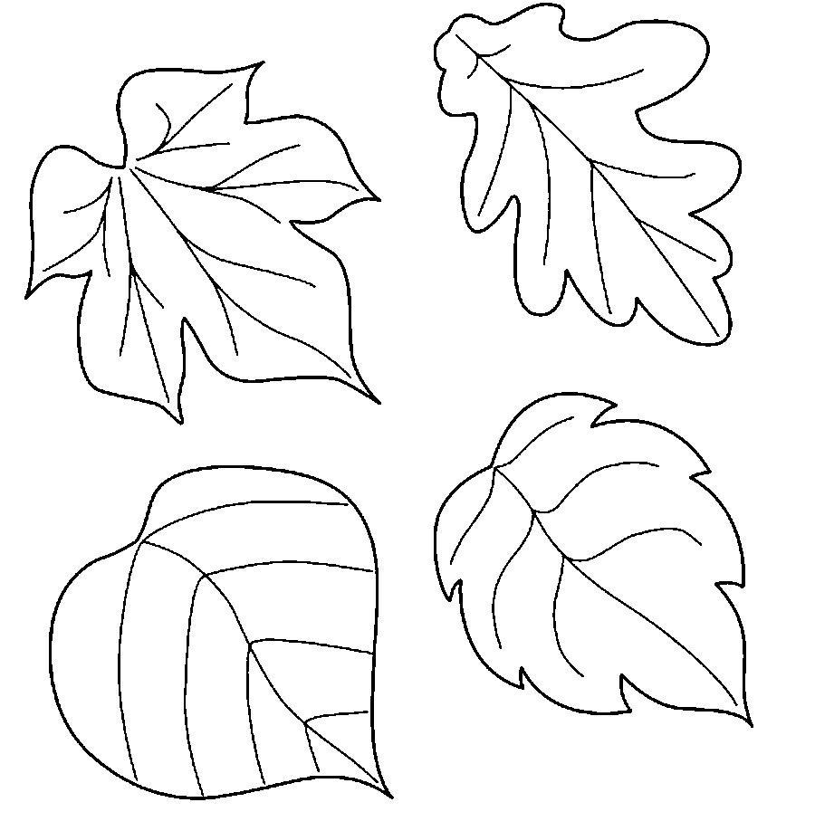 Розмальовки виробів листя для виробів трафарети