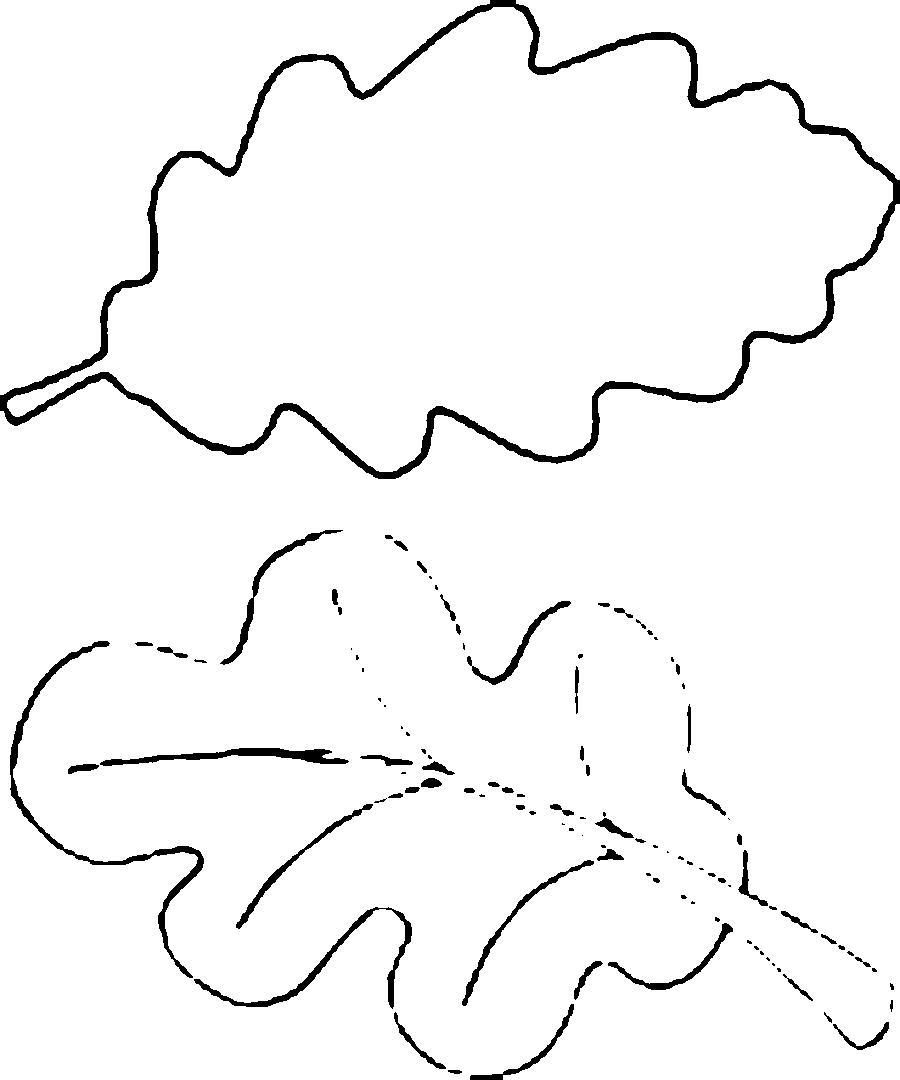 Розмальовки аплікації Контури листя дуба для виробів