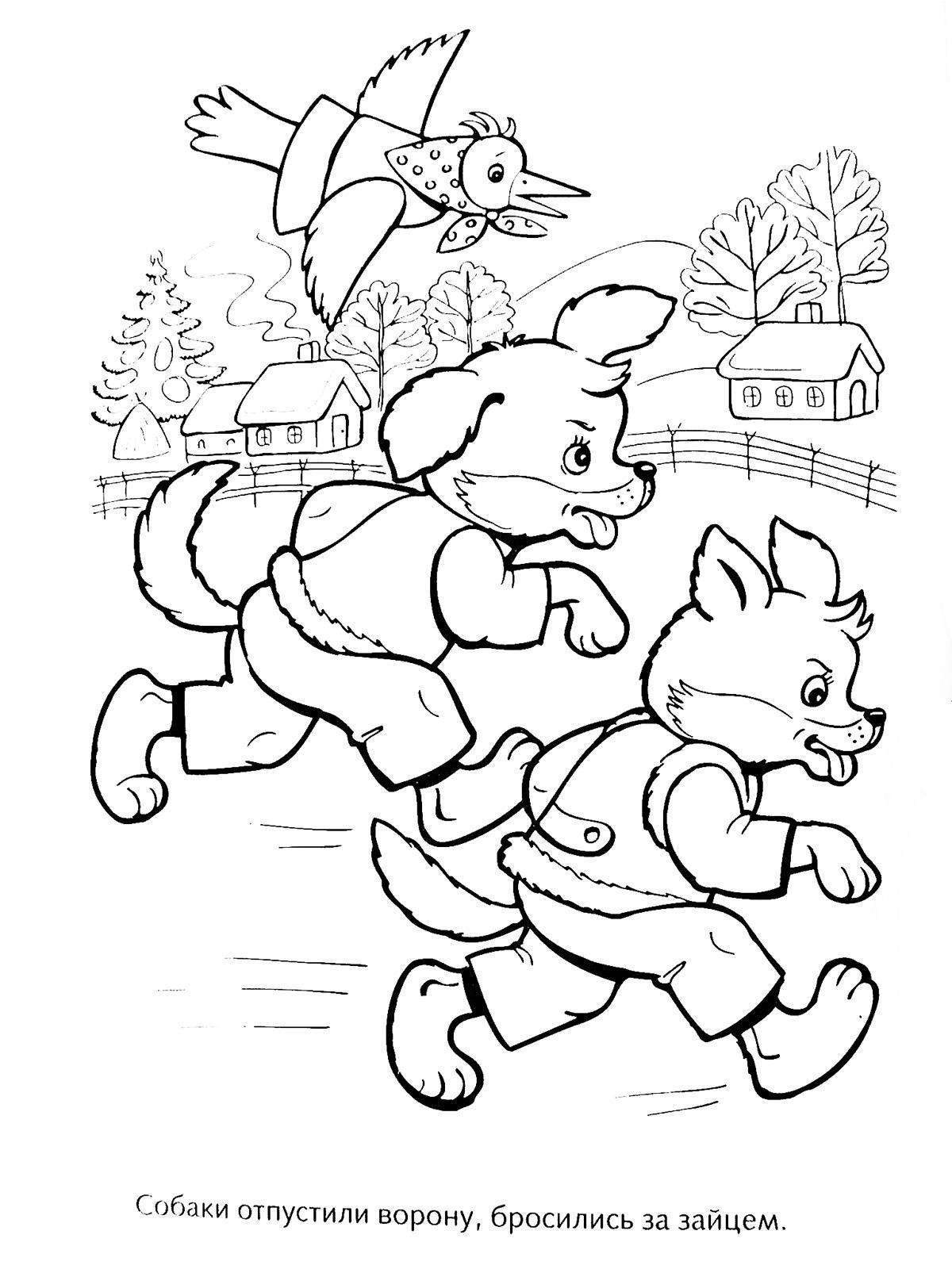 Розмальовки дві Дві собачки кинулися в погоню за зайцем а над ними летить сорока
